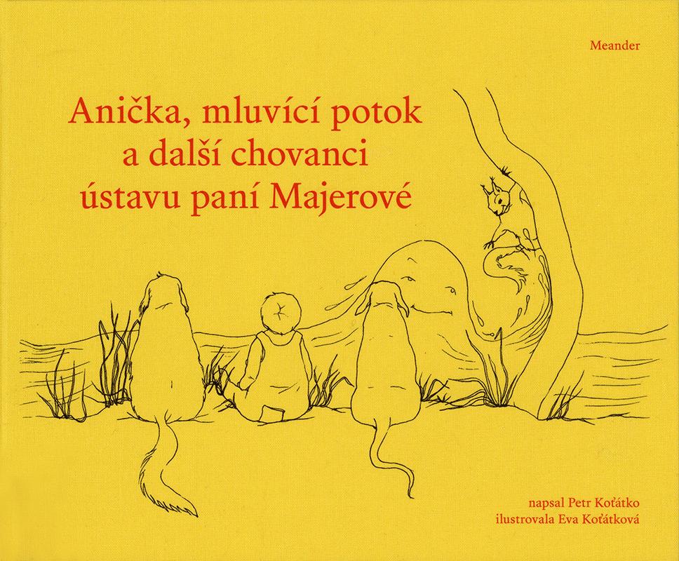 Anička, mluvící potok a další chovanci ústavu paní Majerové (Anna, der sprechende Bach und andere Insassen von Frau Majerovas Sanatorium) Book Cover